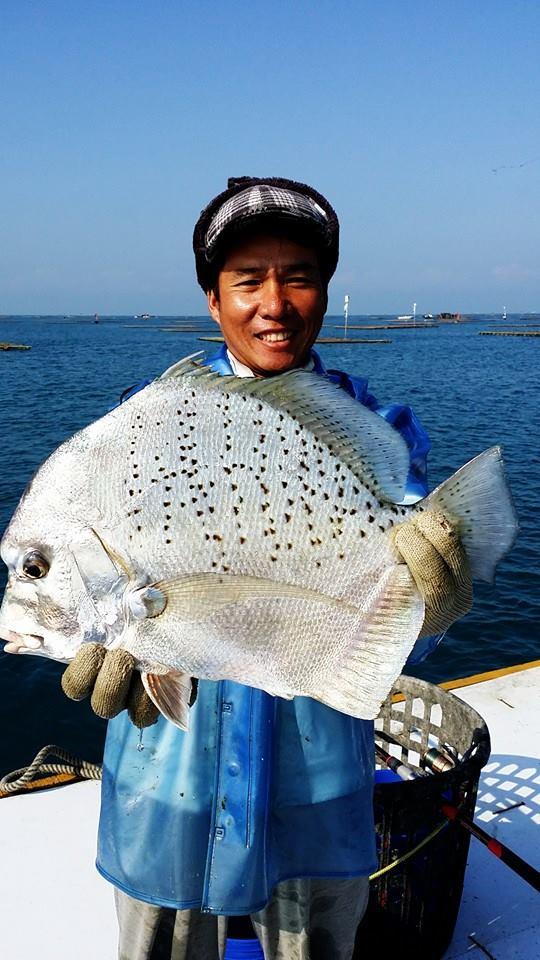 Fisch, Foto(c) 陳正淵