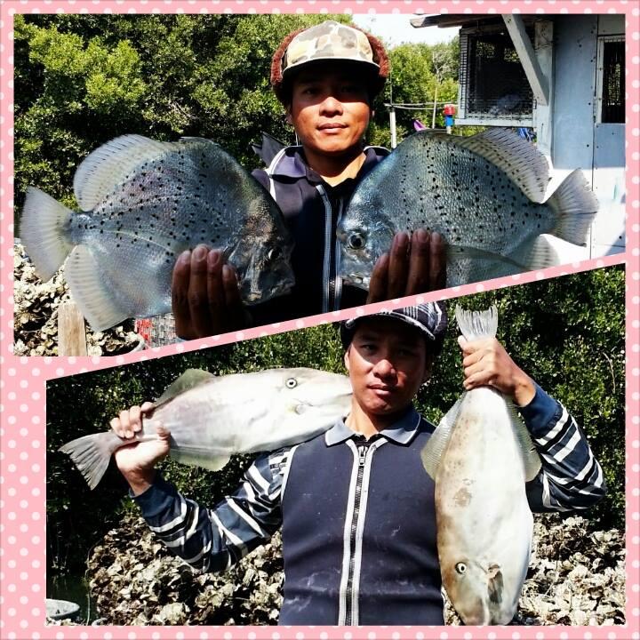 die Zwillinge Fischer, Foto(c) 陳正淵